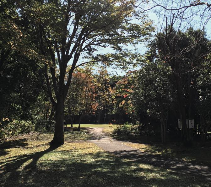 豊ケ岡第九公園1