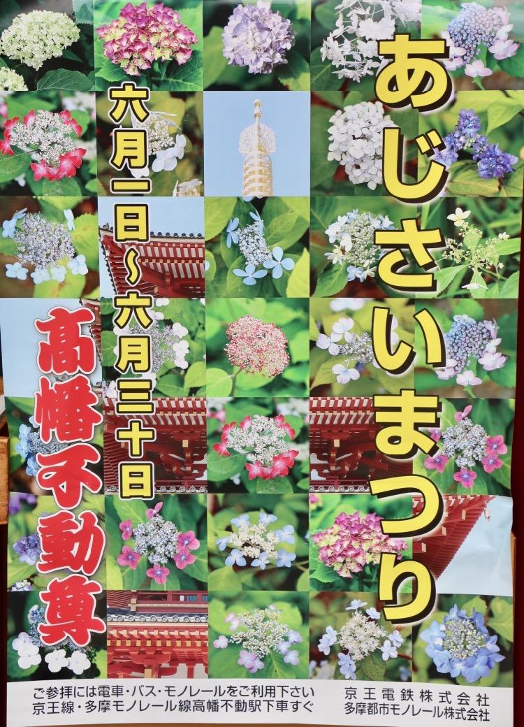 高幡不動尊あじさいまつり2019