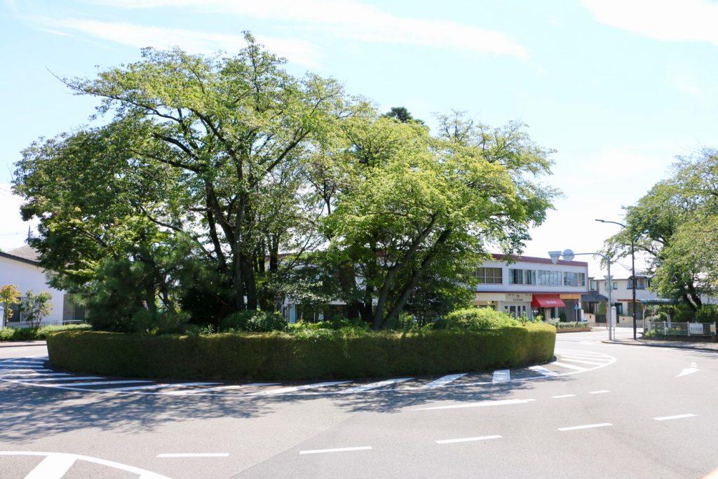 聖蹟桜ヶ丘にある「桜ヶ丘ロータリー」