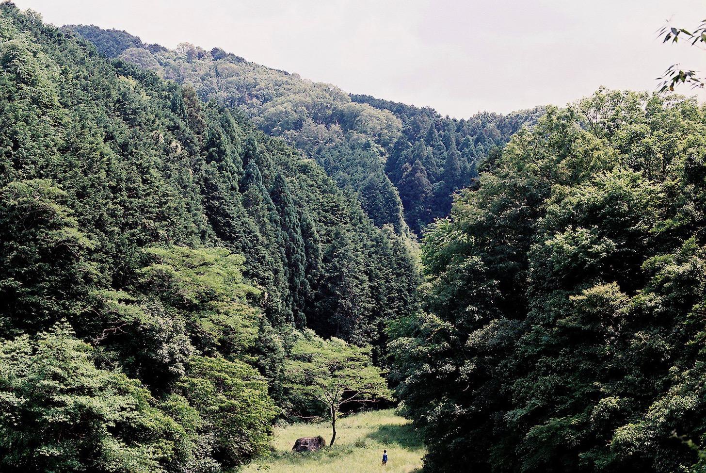 第20回の特別賞 『おばけ』中尾 広道 監督