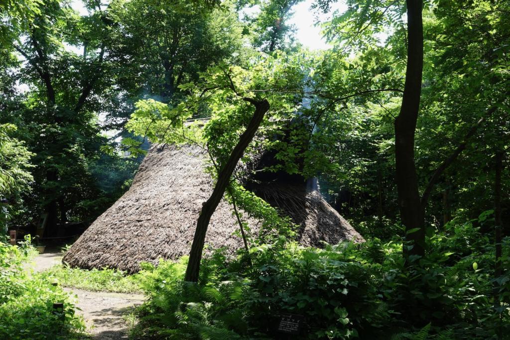 多摩センターの遺跡庭園「縄文の村」中期の竪穴住居(5,000年前)