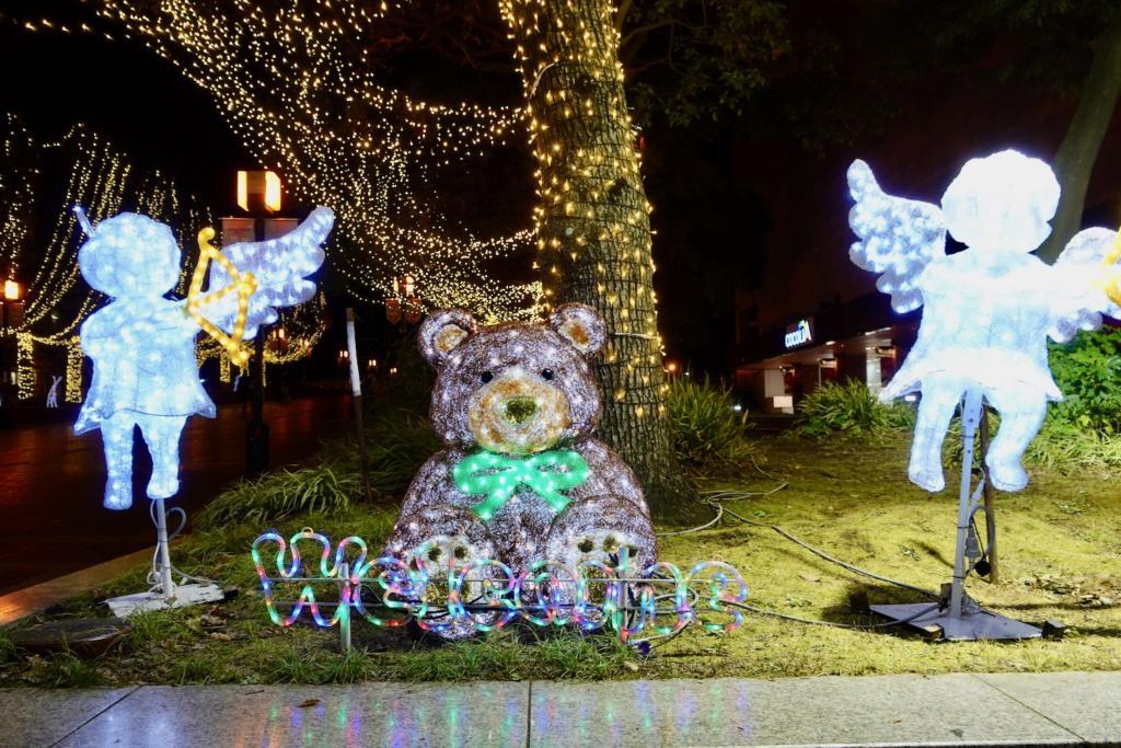 子熊と天使のイルミネーション