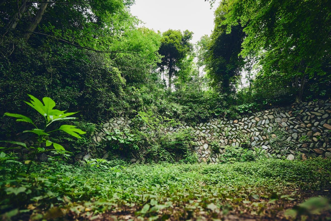 コース1 : 古代の石垣